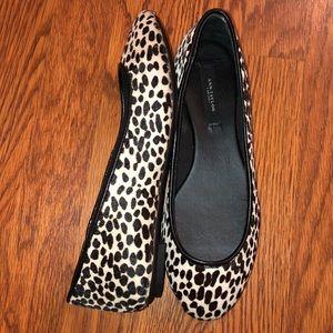 Ann Taylor   Black & White Cheetah Print Flats